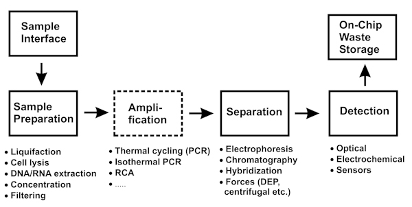 Figure 1. A schematic diagram of the typical process steps involved ...
